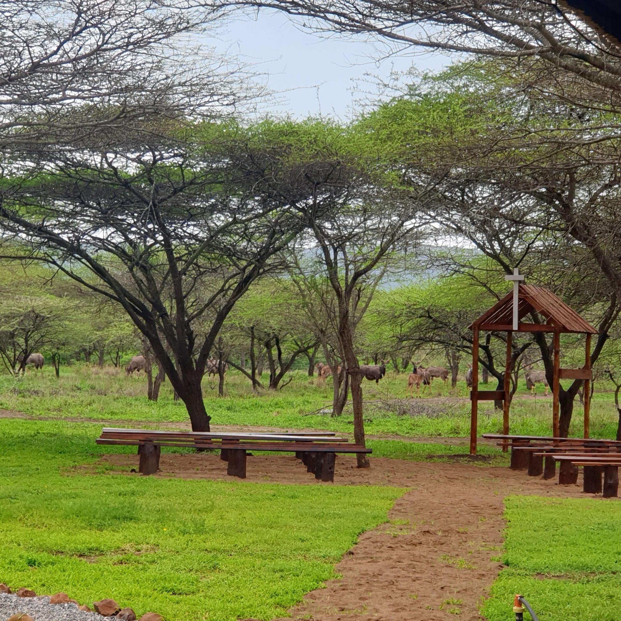 Bayala Nyala Breeders Private Game Reserve